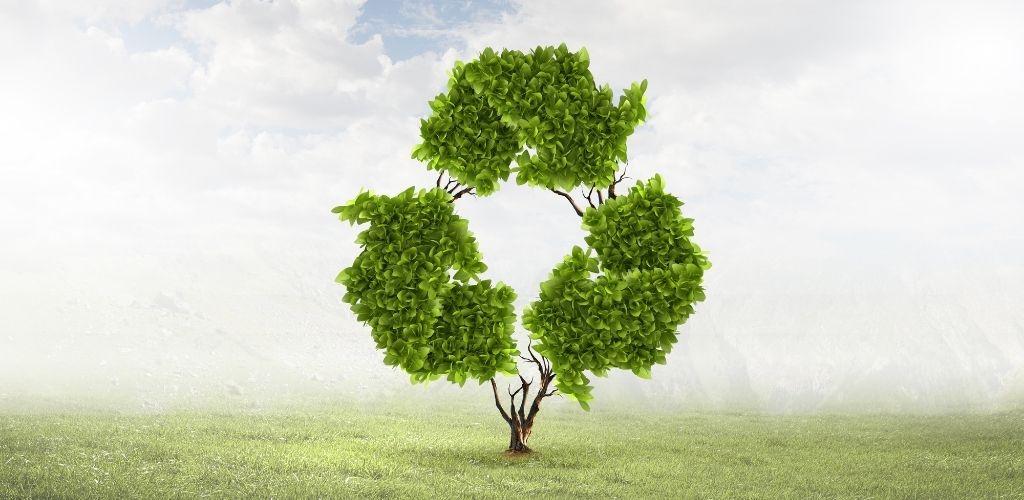 Kreislaufwirtschaft Recycling